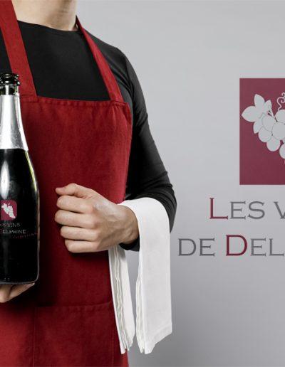 Logo les vins de Delphine
